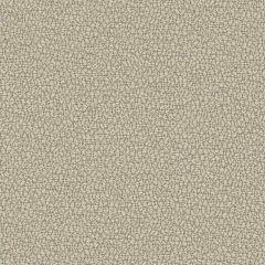 Sunbrella Reef Fossil REE J312 140 Marine Decorative Collection Upholstery Fabric