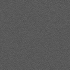 Sunbrella Reef Shadow REE J314 140 Marine Decorative Collection Upholstery Fabric