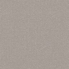 Sunbrella Reef Moonrock REE J310 140 Marine Decorative Collection Upholstery Fabric