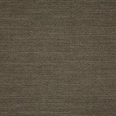 Sunbrella Pueblo Granite 50202-0004 Sling Upholstery Fabric