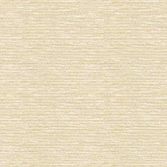 Kravet Sunbrella Gr-70000-0007-0 Soleil Collection Upholstery Fabric