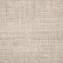 Sunbrella Echo Ash 57005-0000 Elements Collection Upholstery Fabric