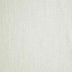 Sunbrella Tailored Cloud 42082-0019 Fusion Collection Upholstery Fabric