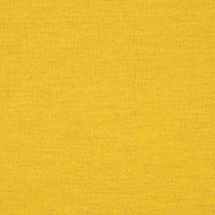 Sunbrella Triumph Dijon 62027-0001 Transcend Collection Upholstery Fabric