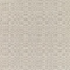 Sunbrella Linen Silver 8351-0000 Elements Collection Upholstery Fabric