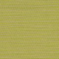 Sunbrella Dupione Peridot 8024-0000 Upholstery Fabric