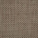 Sunbrella Reed Hickory 50199-0002 Sling Upholstery Fabric